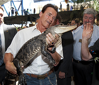 No crocodile tears for Arnie as he meets Big Al