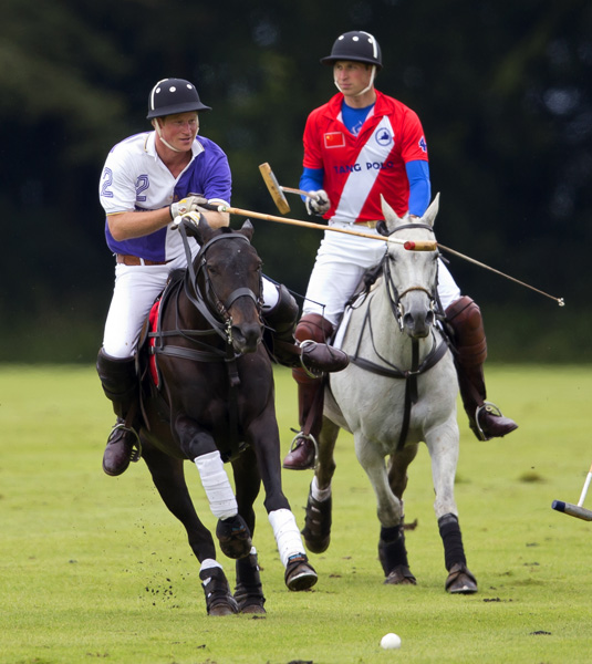Princes William and Harry play polo
