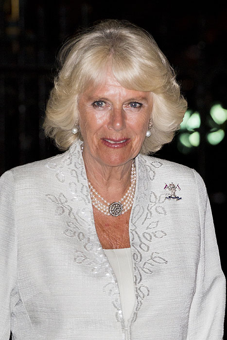 Duchess Of Cornwall Speaks For First Time About Brother's