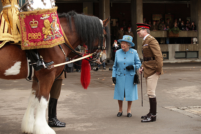the-queen-and-perseus-horse-at-barracks