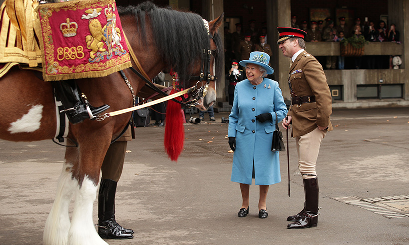 the-queen-and-horse