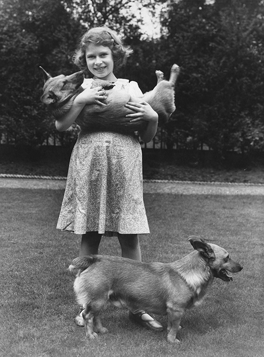 queen-child-dogs