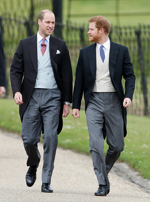 Prince William will most likely organise Prince Harrys stag do
