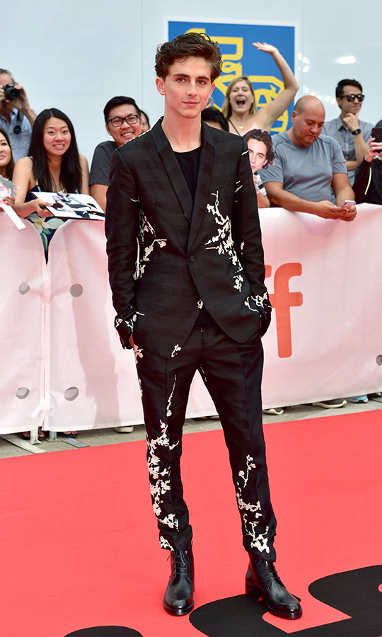 <h2>Timothee Chalamet</h2>