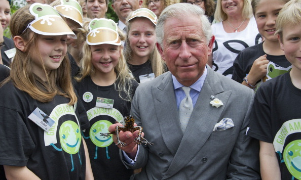Prince Charles holds an Ecuadorian stream tree frog in honor of the Prince's support of conservation and environmental campaigns during a WWF-UK Green Ambassadors Summit attended by school children at Highgrove House on July 5, 2012. <br>  Photo: Getty Images