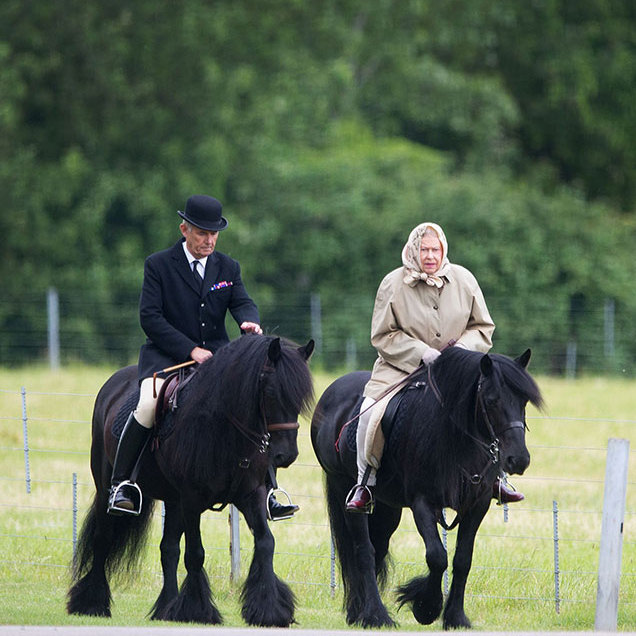In June, 2015 Her Majesty was spotted out and about around the grounds of her Windsor Castle home in Berkshire with her head groom Terry Pendry. The duo often go horse riding together, especially when the weather cooperates.