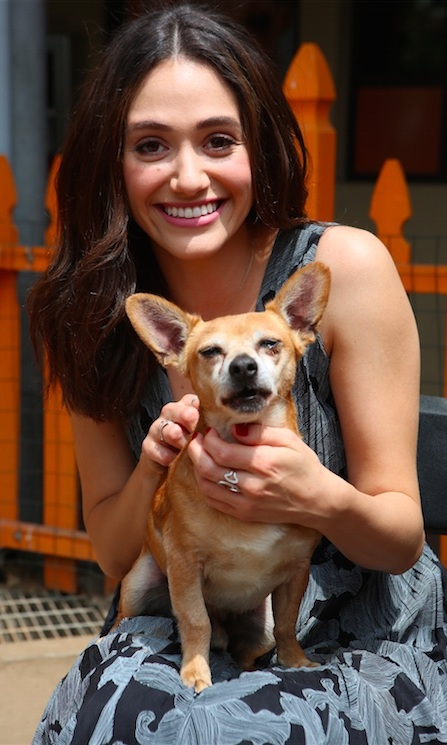 This week the celebrities rocked the stage, celebrated birthdays and got ready for back to school. 