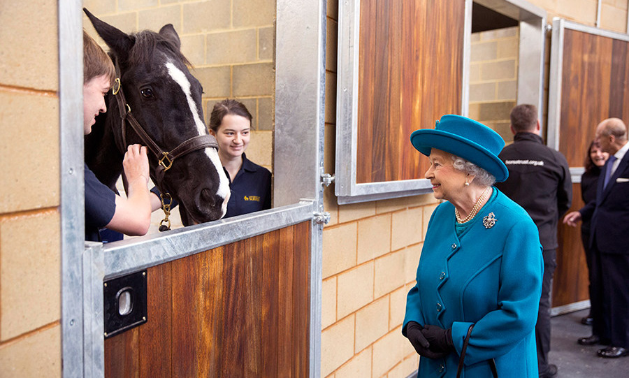 Queen Elizabeth was regal in blue as she enjoyed a chat with workers during the opening of the School of Veterinary Medicine at the University of Surrey in Guildford, England. <br>