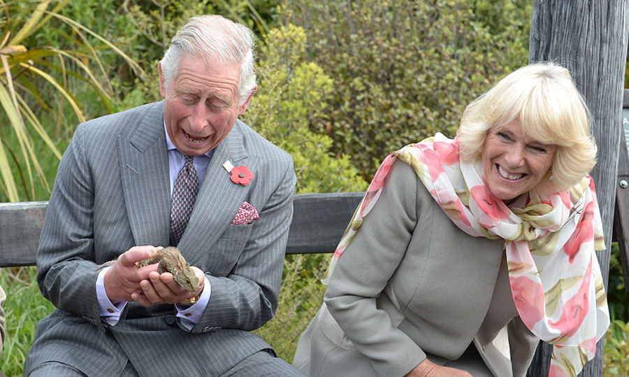 Prince Charles and the Duchess of Cornwall got up close and personal with a tuatara during their visit to the Orokonui Ecosanctuary in Dunedin, New Zealand on November 5, 2015. <br> Photo: Getty Images