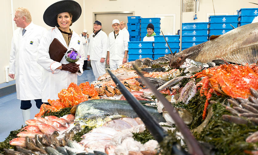 Take note – it is possible to look totally glam when you go to the market! Queen Maxima of the Netherlands rocked one of her signature hats at the Schmidt sea fish market in Rotterdam.