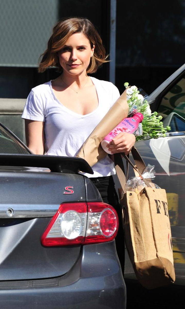 February 23: She's got her hands full! Sophia Bush glowed as she left Whole Foods with Lifeway Kefir and fresh flowers in tow.