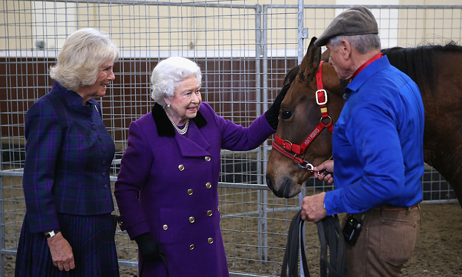 In October 2015 the monarch was joined by Camilla, Duchess of Cornwall, looked thrilled to attend a horse whispering demonstation by Brooke Global Ambassador Monty Roberts at the Royal Mews, Buckingham Palace.