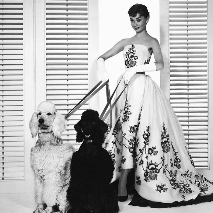 """I was born with an enormous need for affection, and a terrible need to give it."" - Audrey Hepburn