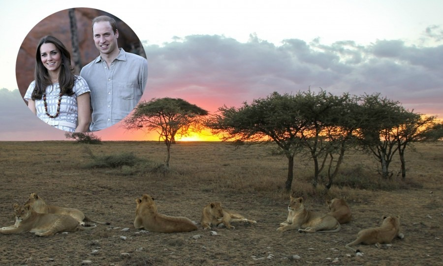 c176e5c7d4aa5 Be like Prince William and Kate Middleton and plan your own romantic safari  in Africa