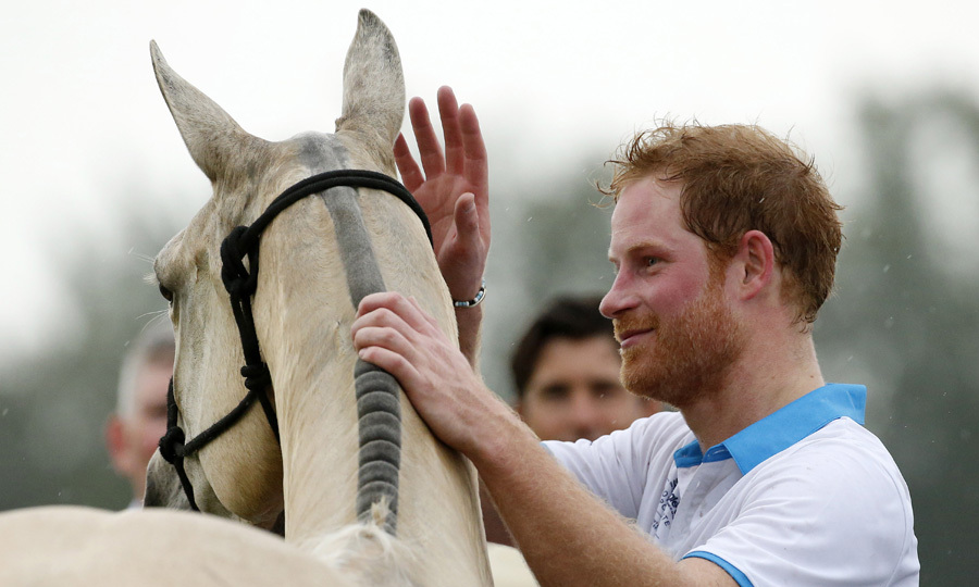 Prince Harry pats down his horse following the Sentebale Royal Salute Polo Cup 2016 in Florida.