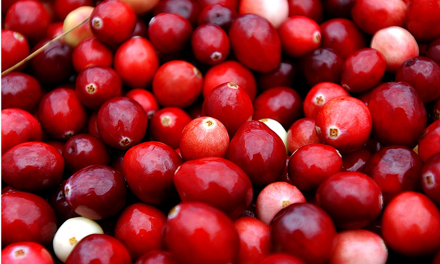 <b>Cranberries </B>