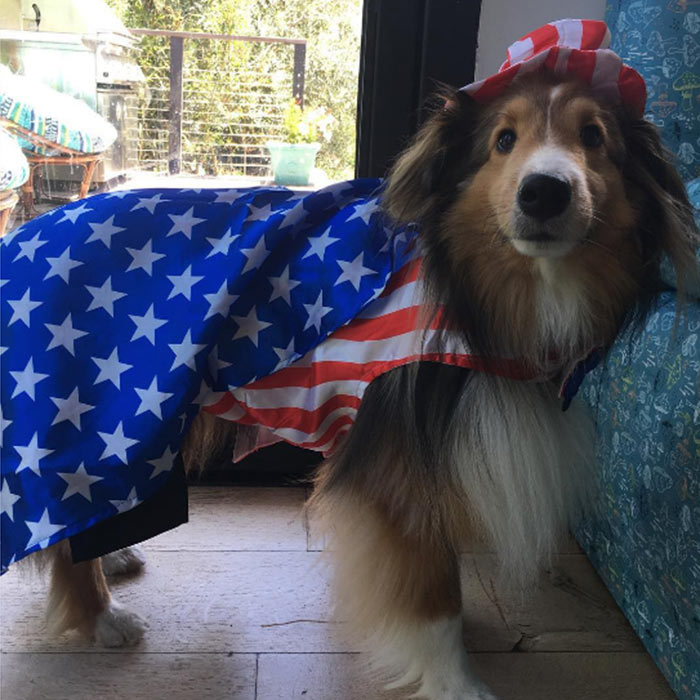 "<a href=""https://us.hellomagazine.com/tags/1/miley-cyrus/"" style=""background-color: initial;""><strong>Miley Cyrus</strong></a>