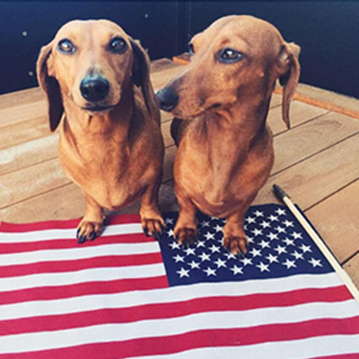 "<a href=""https://us.hellomagazine.com/tags/1/rosie-huntington-whiteley/""style=""background-color: initial;""><strong>Rosie Huntington-Whiteley</strong></a>