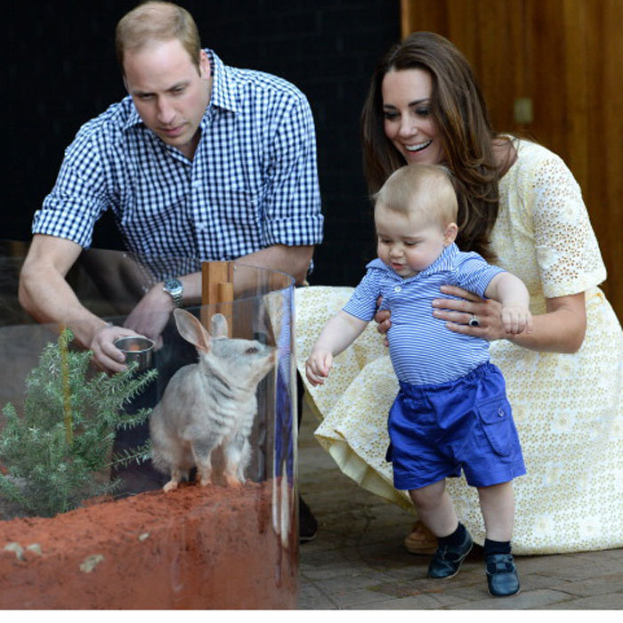 During a visit to Taronga Zoo, the young royal was enchanted to meet a rabbit-bandicoot also named George.