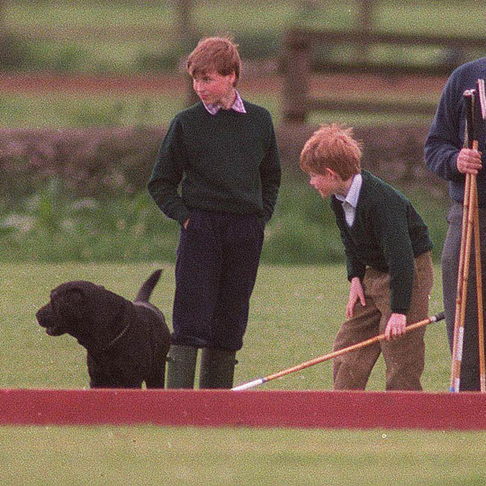 Polo and a pup seemed like a recipe for a great day for a little Prince Harry (right) back in 1995.