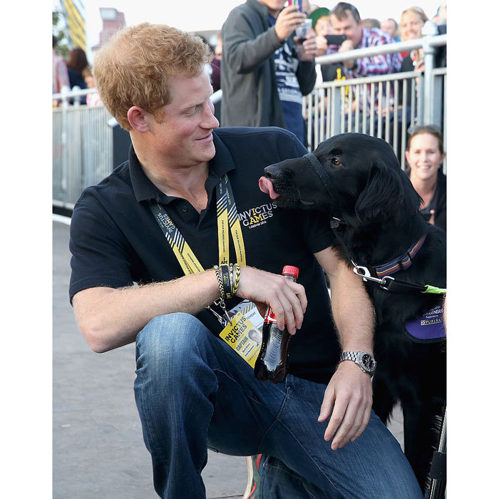 Oh hello, there. The royal befriended a friendly assistance dog at the 2014 Invictus Games in London.