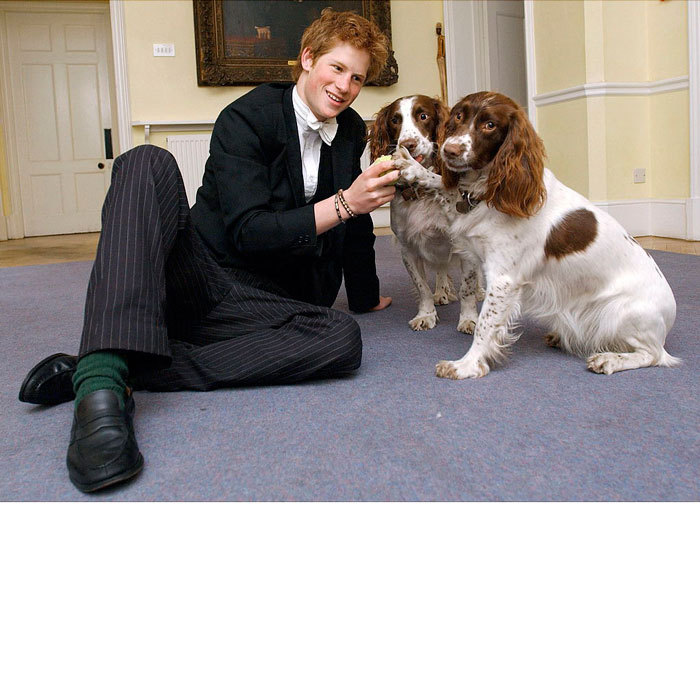 Double the canines means double the cuteness. The royal got down on the floor to play with Rosie and Jenny, the housemaster of Manor House at Eton, Andrew Gailey's dogs.