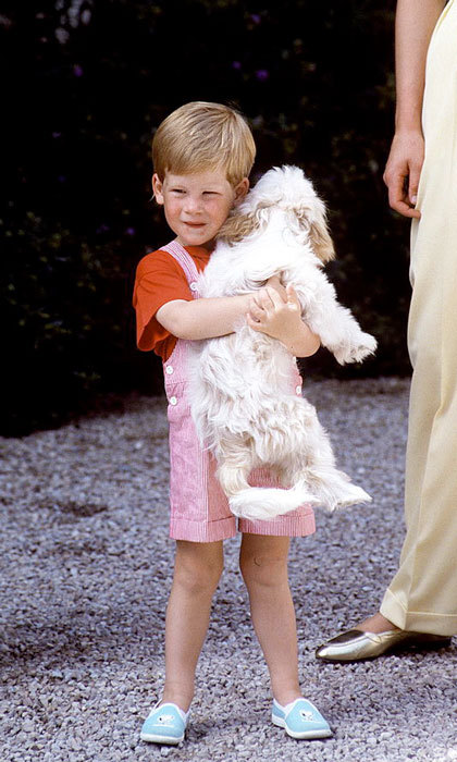 The royal and his pups have been melting hearts since 1987, while on holiday in Majorca, Spain.