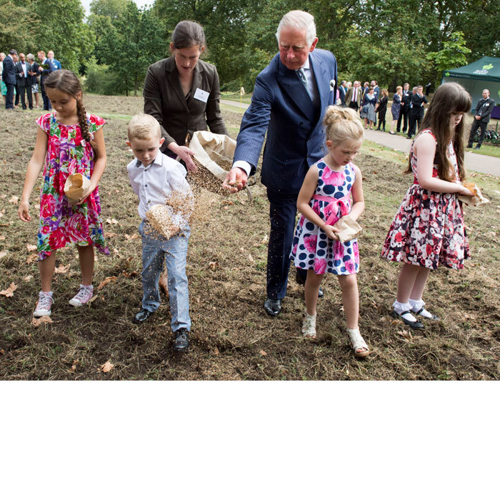 Prince Charles showed off his green thumb sowing seeds at the Queen's Meadow with a group of children as part of his nationwide Coronation Meadows project in London's Green Park.