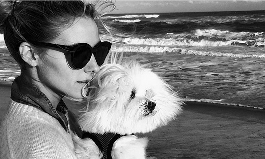 Oh-so-stylish Olivia Palermo finds the perfect chic match in her canine companion, Mr Butler, while vacationing in the Hamptons.