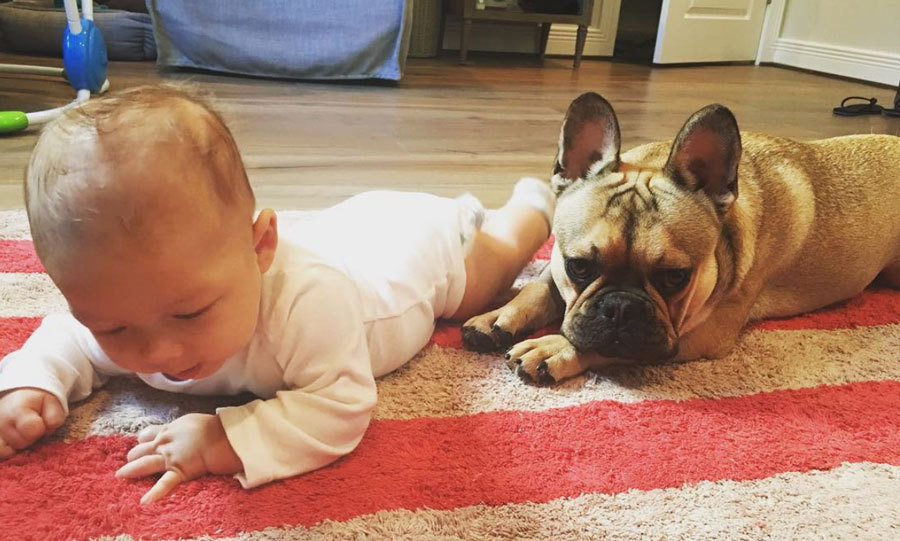 "Growing strong like his daddy! Boomer Phelps enjoyed tummy time alongside his ""brother #legend !!""