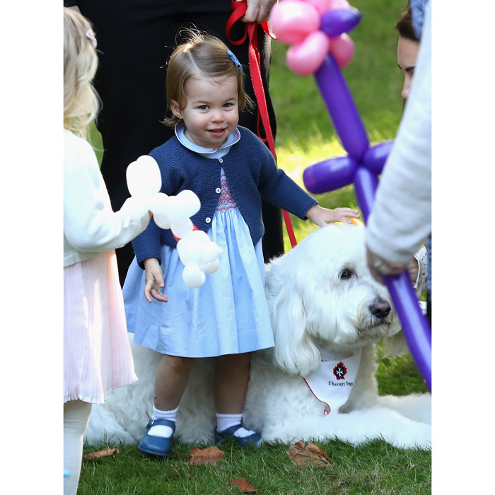 The little Princess made a furry friend - a therapy dog named Moose - which she pet and hopped on.
