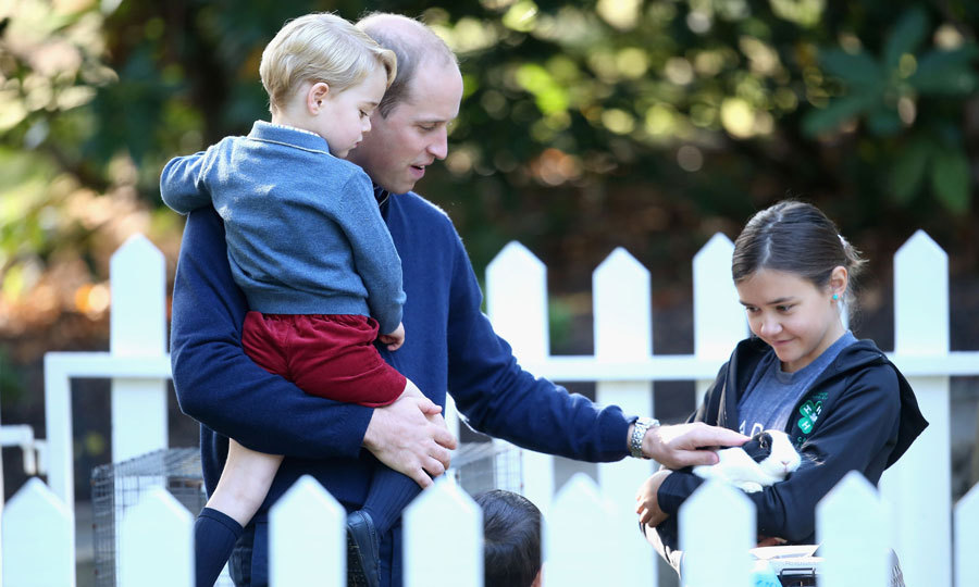 The British royal held on to his son as he pet a black-and-white bunny at a petting zoo at the children's party.