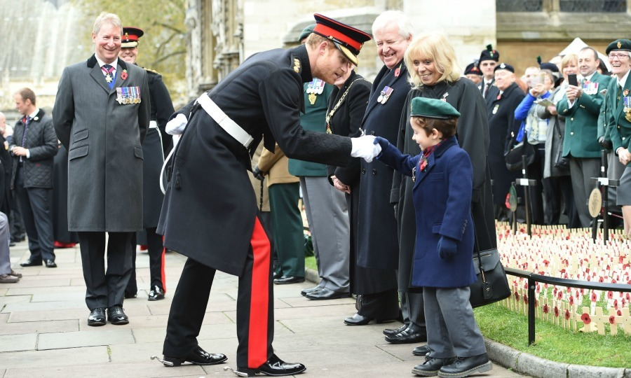 Prince Harry greeted a little visitor, who offered an adorable smile, during his visit to the Field of Remembrance. 