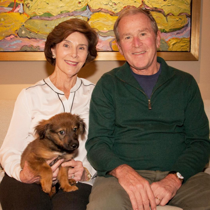 "The Bush family has a new addition! Former President George W. Bush took to his Instagram to introduce his and First Lady Laura Bush's newly adopted puppy named Freddy. ""@laurawbush and I are thrilled to introduce the newest member of our family, Freddy Bush. We visited the @spcatexas' Jan Rees-Jones Animal Care Center last Tuesday to thank them for their great work – and came home with a puppy,"" the former commander-in-chief attached to the post.