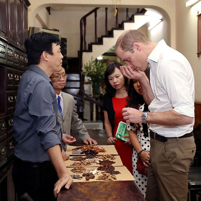 Kate Middleton's husband visited a traditional medicine shop on Lan Ong Street in Hanoi's Old Town to learn more about traditional medicine and its links to the illegal wildlife trade.   