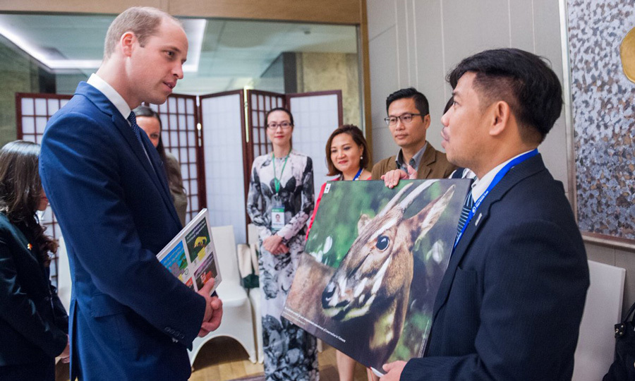 Kate Middleton's husband met with leaders of some of the NGOs at the conference who like the Duke's organizations are fighting to end wildlife crime.