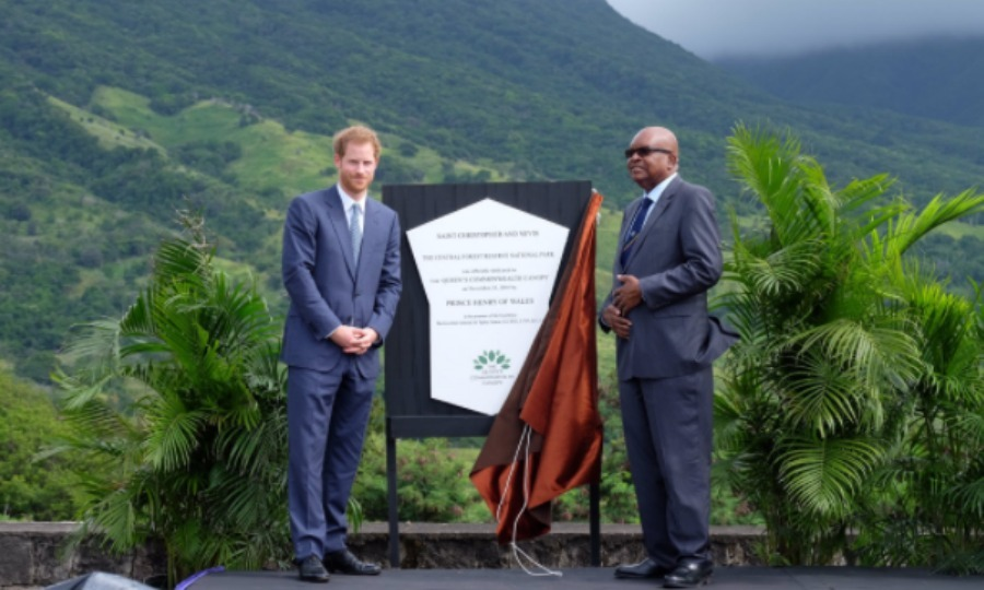 After taking in various performances, Harry proudly unveiled the St. Kitts and Nevis dedication to the Queen's Canopy at Central Forest Reserve National Park in St. Kitts. 