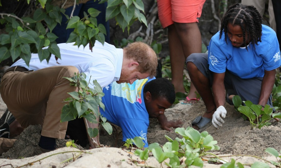 <b>Day Four: St. Kitts and Nevis</b>