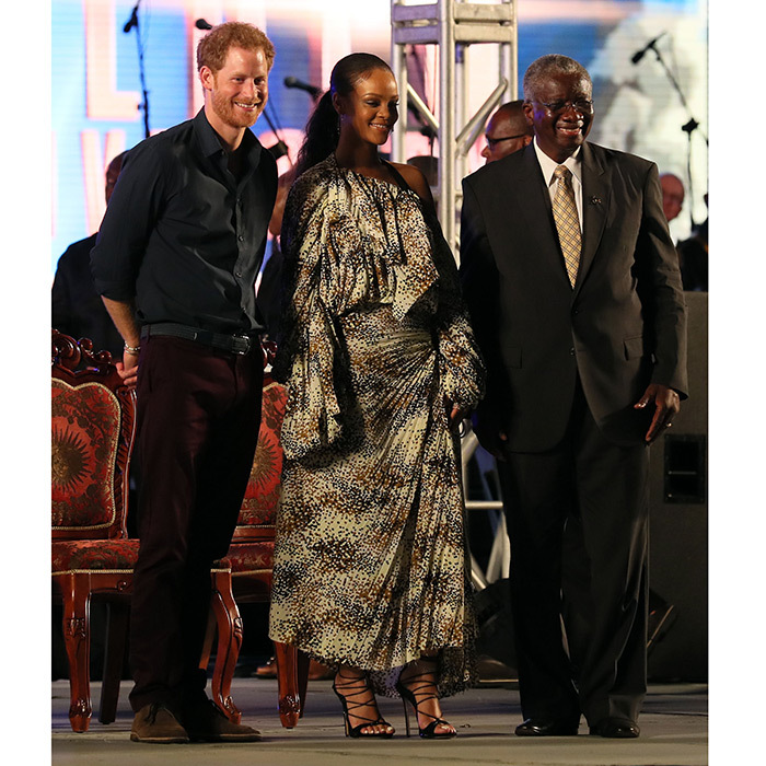 The pop star and the fifth-in-line to the throne were reunited at a concert held at the Kensington Oval cricket ground in Bridgetown, Barbados, where they were pictured laughing together after the huge crowd began chanting Prince Harry's name.