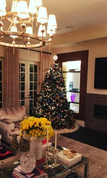 "Sofia Vergara showed off her and Joe Magnaniello's pretty Christmas tree. The <i>Modern Family</i> actress couldn't contain her excitement as she shared the photo writing, ""It's up!""