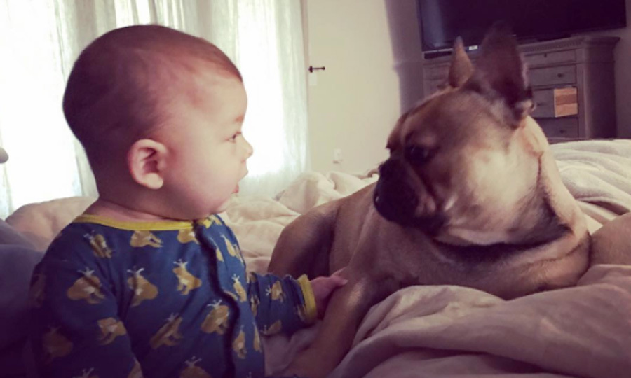 "It was an adorable face-off for Boomer and a dog named ""Legend.""