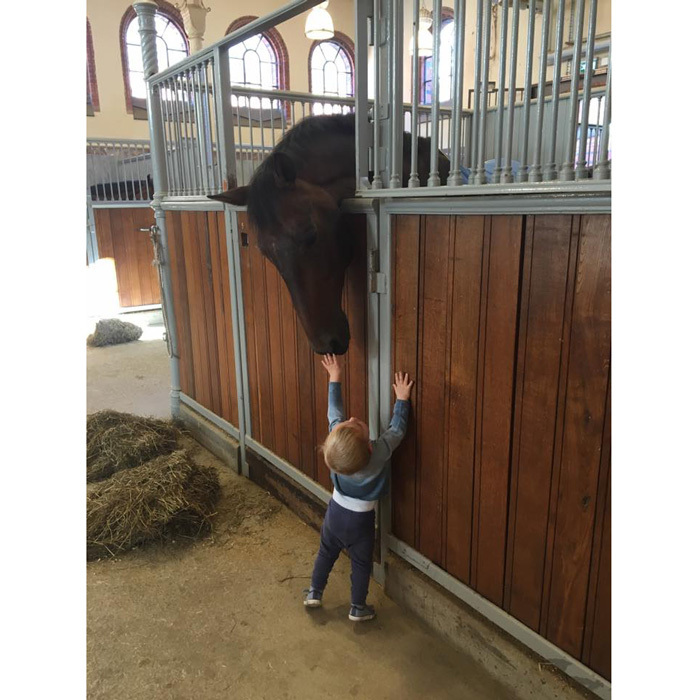 Prince Nicolas got up on his tippy toes at a stable to caress the snout of a friendly horse. 