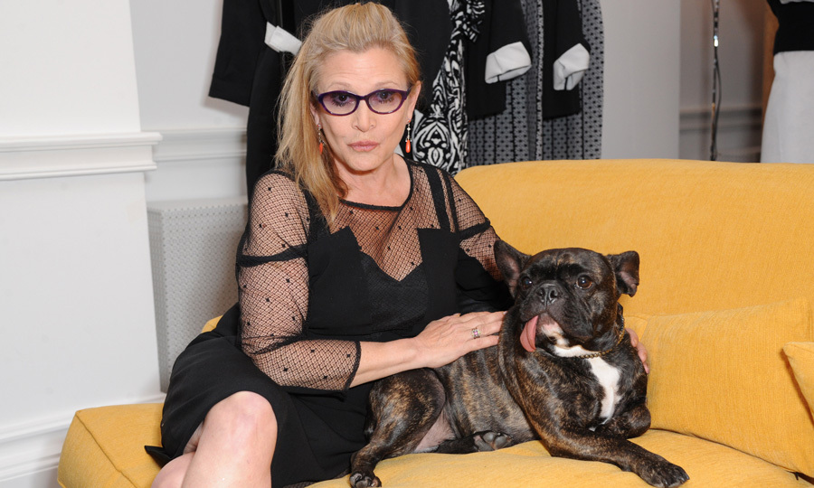 "Carrie (photographed with her beloved French bulldog Gary) suffered from mental illness, particularly bipolar disorder. She once said, ""living with manic depression takes a tremendous amount of balls. ... At times, being bipolar can be an all-consuming challenge, requiring a lot of stamina and even more courage, so if you're living with this illness and functioning at all, it's something to be proud of, not ashamed of.""