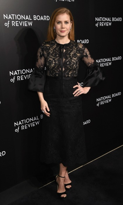 January 4: Amy Adams looked lovely in lace at the 2016 National Board of Review Gala in NYC. The actress opted for a chic Marchesa number for the occasion.  