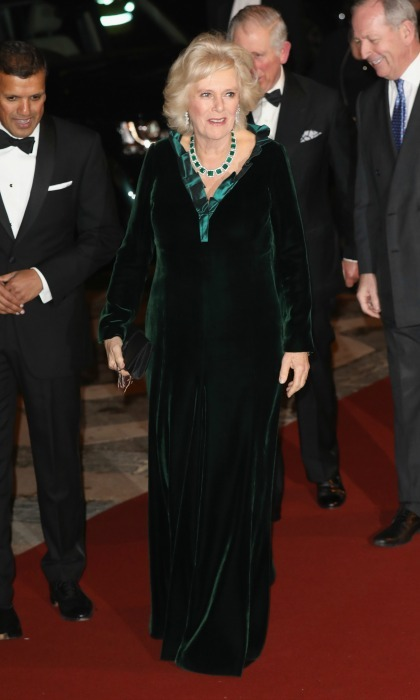 Camilla, Duchess of Cornwall wore an emerald green velvet gown during the British Asian Trust reception dinner. 