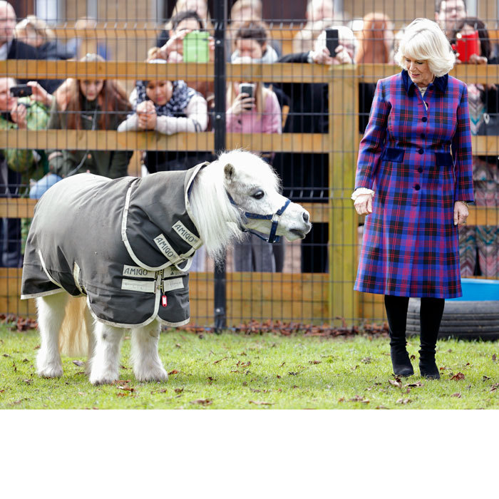 Camilla, Duchess of Cornwall, met a Shetland Pony named Pedro during a visit to the Ebony Horse Club riding center to celebrate the club's 21st anniversary.