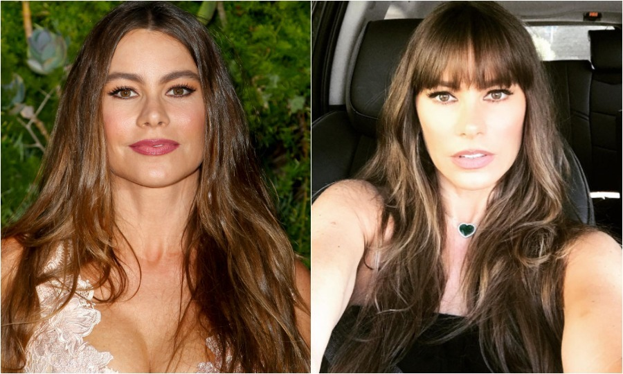 <b>Sofia Vergara</b>