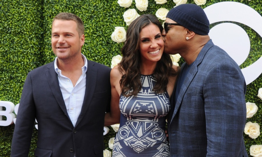 Co-star love! Also in attendance at the soiree were <i>NCIS: Los Angeles</i> stars Chris O'Donnell, Daniela Ruah and LL Cool J. The trio posed on the carpet for pics together, with LL giving Daniela a sweet kiss on the cheek. Chris also planted one on her, as seen in the photos.
