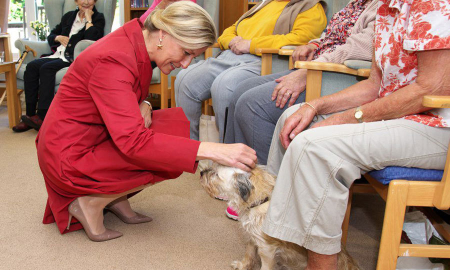 The Countess of Wessex made a furry friend during her visit to the Earl MB Hospice to celebrate its 35th anniversary.