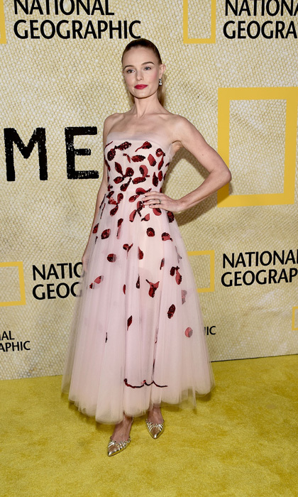 Kate Bosworth wore a strapless Oscar de la Renta dress from their Spring 2018 collection to the National Geographic premiere of <i>The Long Road Home</i> in L.A. The actress wore a pair of silver stilettos and kept her jewelry to a minimum for the outing. 